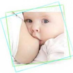 Coussinets d'allaitement par 6